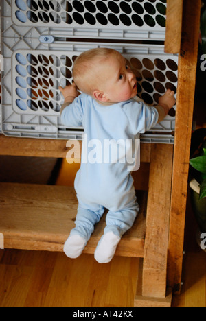 Toddler trying to climb steps with child gate in place - Stock Photo