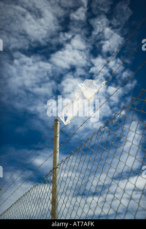 Plastic bag on barbed wire - Stock Photo