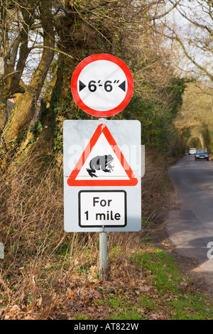 Frogs / toads for one Mile, traffic sign at the side of a narrow country road. Hampshire. UK. - Stock Photo