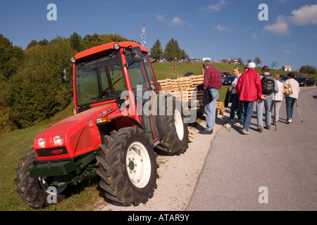 Locals selling produce at the Chestnut festival Jance on outskirts of Ljubljana Slovenia - Stock Photo