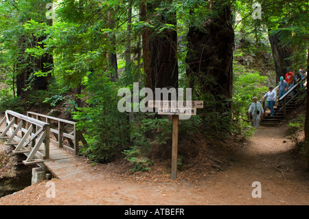 Hikers and Hiking trail guide signs at Pfeiffer Big Sur State Park Monterey County California - Stock Photo