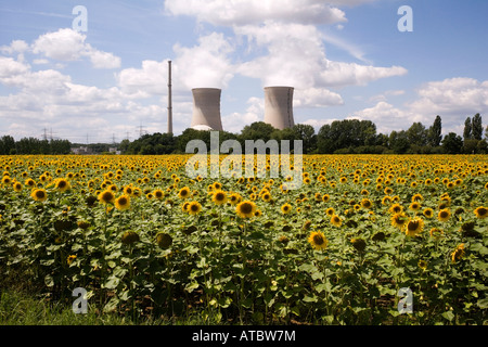 Atomic power plant Grafenrheinfeld in the front a field of sunflowers - Stock Photo
