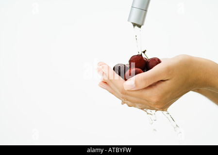 Woman washing handful of tomatoes under faucet, cropped view of hands, close-up - Stock Photo
