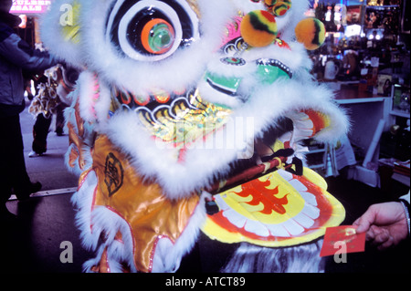 A lion enters an establishment to be fed a red envelope containing money by the shop owner, Annual lion dances,Chinatown, - Stock Photo