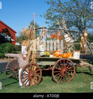 Halloween Display of Pumpkins or Squash on Cart in Amish Acres, Indiana, USA - Stock Photo