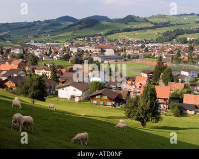 Sheep graze on hillside above alpine Village of Appenzell Switzerland - Stock Photo