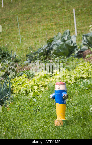 Brightly painted fire hydrant near garden in the village of Gimmelwald Switzerland - Stock Photo