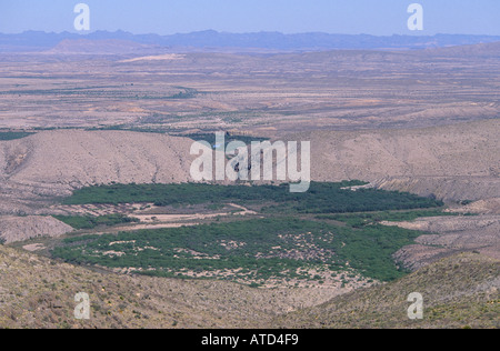 View of cottonwood trees following the course of Rio Conchos as it winds through the Chihuahua Desert near Ojinaga - Stock Photo