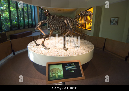 Page Museum La Brea Tar Pits Los Angeles California - Stock Photo