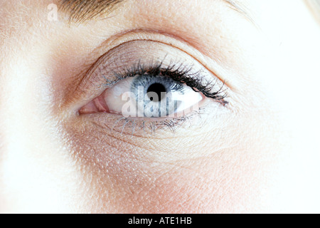 close up of a female eye showing the iris pupil and eyelashes - Stock Photo