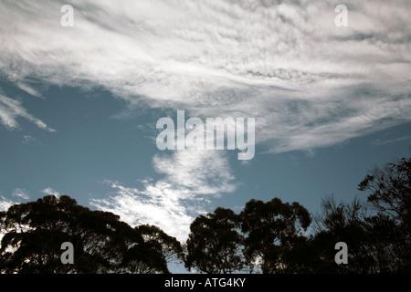 Altocumulus Undulatus Clouds - Stock Photo