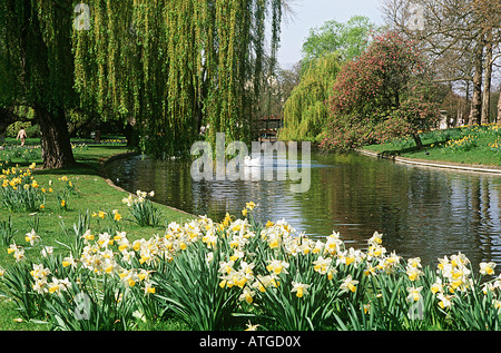 Regents park london - Stock Photo