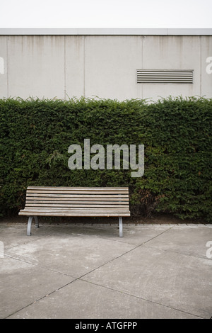A bench in a park - Stock Photo