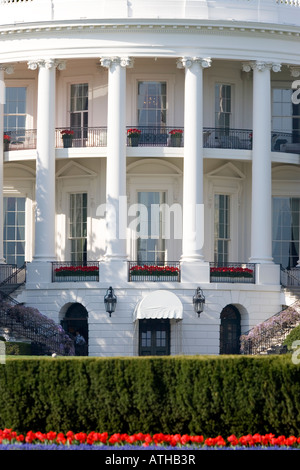 Close up view of the rear of the White House, Washington DC, with the Truman Balcony in Springtime with Tulips and - Stock Photo