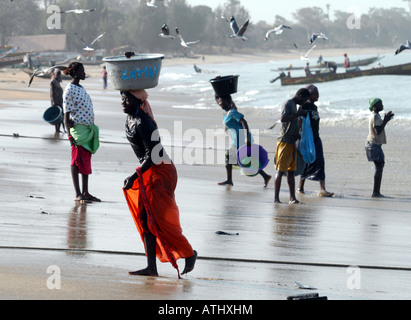 WOMAN UNLOADING THE CATCH IN TANJI. A FISHING VILLAGE IN THE GAMBIA WEST AFRICA. - Stock Photo