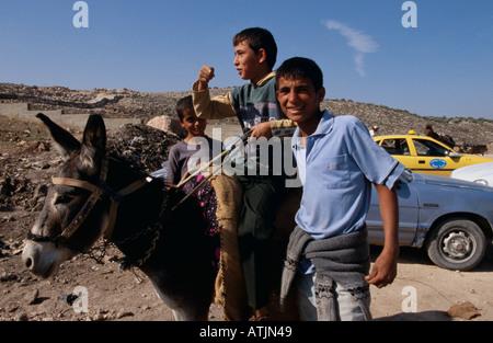 Teenage boys and donkey on destroyed road, Tulkarm, West Bank - Stock Photo