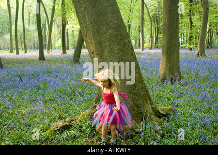 A five year old girl dressed in a fairy outfit running in an English bluebell wood. - Stock Photo
