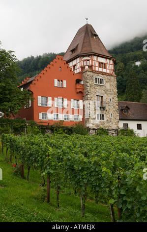 Old houses in Vaduz Liechtenstein - Stock Photo