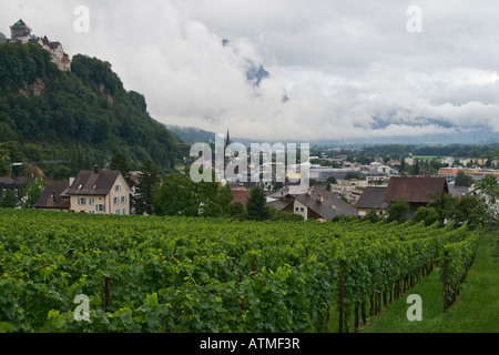 View at Vaduz capital of principality Liechtenstein and at vineyards close to the city - Stock Photo