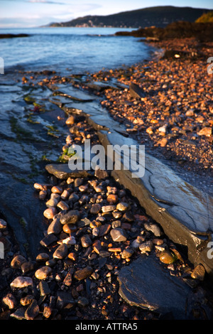 wet pebbles on a beach - Stock Photo
