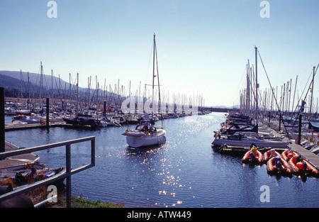 yacht in main channel Largs Marina Largs Ayrshire Scotland Europe - Stock Photo