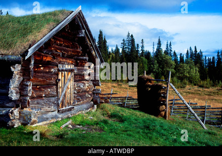 Old hut in summer landscape - Stock Photo