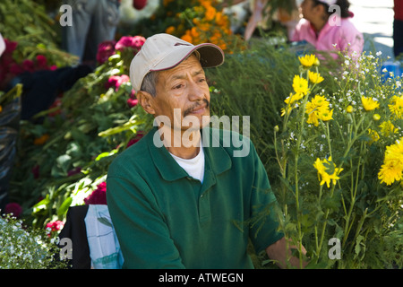 MEXICO Guanajuato Mexican man selling flowers at outdoor booth - Stock Photo