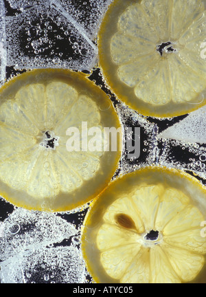 An iced fizzy drink with lemon slices shot in close up against a black background - Stock Photo
