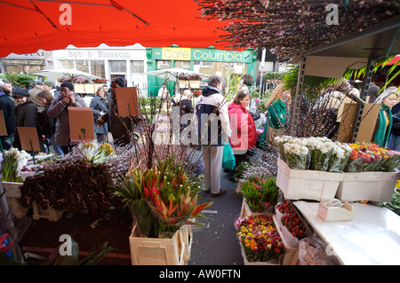 Columbia Road Flower Market London - Stock Photo