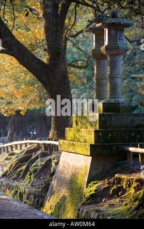 Stone lanterns at the Kasuga Shrine Nara Japan 5 - Stock Photo
