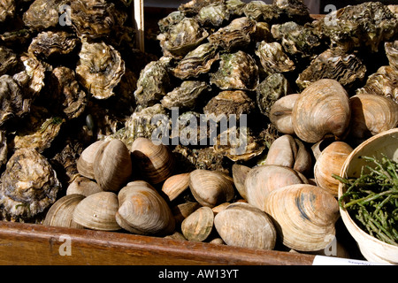 Oysters and clams for sale at Borough Market, London