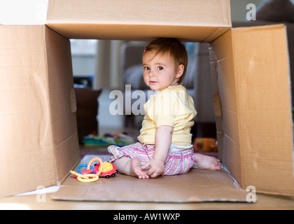 11 month old baby girl playing in a cardboard box - Stock Photo