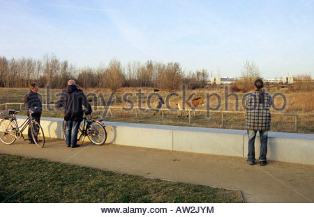 Przewalski horse as part of landscape conservation project in Leipzig Germany residents watching - Stock Photo
