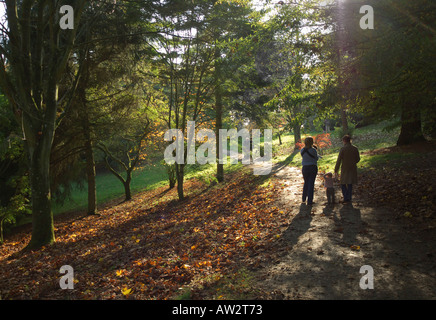 batsford arboretum near moreton in the marsh the cotswolds photographed in autumn gloucestershire england midlands - Stock Photo