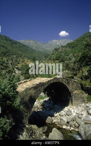 Madrid region  Roman bridge  Over river  Single span  Cobbled surface  Wooded slopes  View of peaks - Stock Photo