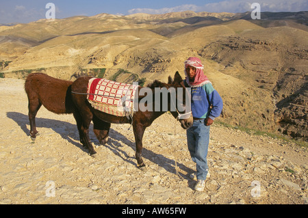 A young Palestinian boy with a donkey in the Judean desert near Jericho - Stock Photo