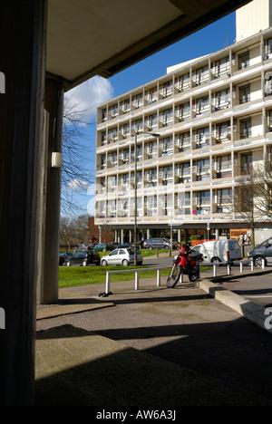 Alton Estate West Roehampton London Post War Modernist Flats Built By Stock Photo Royalty Free