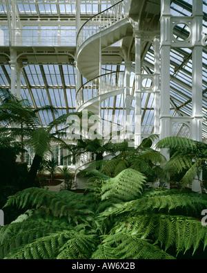 Temperate House (1862-98), Royal Botanic Gardens Kew, London. Architect: Decimus Burton - Stock Photo