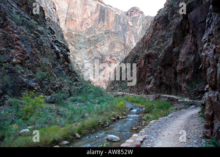 NORTH KAIBAB TRAIL AND BRIGHT ANGEL CREEK IN THE INNER GORGE KNOWN AS THE BOX ABOVE PHANTOM RANCH IN GRAND CANYON - Stock Photo