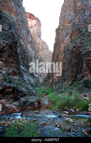 CONFLUENCE OF BRIGHT ANGEL AND PHANTOM CREEKS BY NORTH KAIBAB TRAIL IN THE INNER GORGE KNOWN AS THE BOX ABOVE PHANTOM - Stock Photo