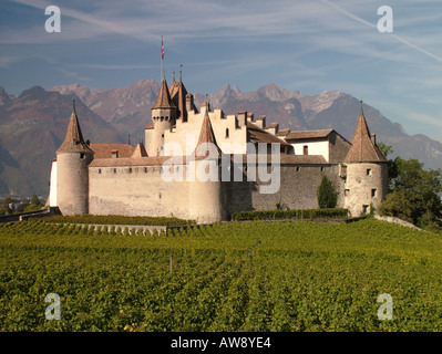 AJD47725, Switzerland, Europe, Vaud, Aigle - Stock Photo