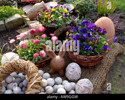 Horned pansies (Viola cornuta) and common daisy (Bellis perennis) with Easter bunny - Stock Photo