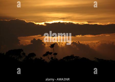 Sunset in Soberania national park, Republic of Panama. - Stock Photo
