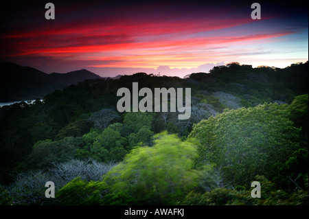 Colorful skies at dusk in Soberania national park, Republic of Panama. - Stock Photo