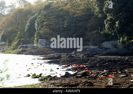 Mooring buoys on Loe beach Feock Cornwall England UK Europe - Stock Photo