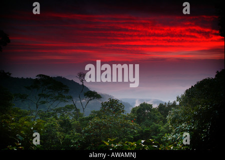 Colorful skies at dawn seen from Cerro Pirre in Darien national park, Darien province, Republic of Panama. - Stock Photo