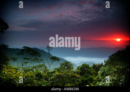 Beautiful sunrise seen from Cerro Pirre in Darien national park, Darien province, Republic of Panama. - Stock Photo