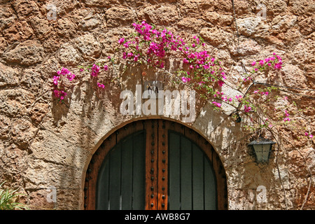 Doorway Valldemossa Majorca decorated with colourful flowers - Stock Photo