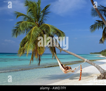 Palm tree on beach hanging over water, young couple in hammock, Maldives, Indian Ocean - Stock Photo