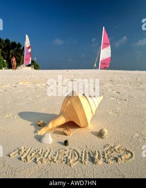 Shells on the beach, 'Maldives' written in sand, Maldives, Indian Ocean - Stock Photo